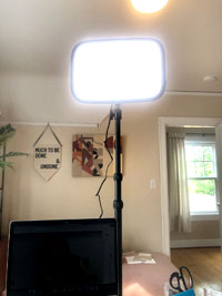Photograph of a rectangular light on a tall black stand above a computer monitor. In the background is an open door, wall art, and a sofa.